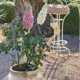Dekoblume 2er Set Lilacs