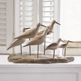 Vögel Kontreo