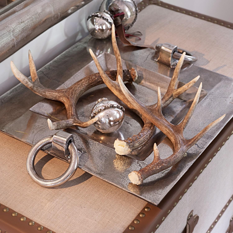 deko geweih 3er set antier loberon. Black Bedroom Furniture Sets. Home Design Ideas